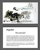 Magische-Geschenkbox-Puzzle-Rtsel-Geschenkschachtel-Geldgeschenkbox-Geldgeschenk-aus-Holz