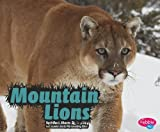 img - for Mountain Lions (Wildcats) book / textbook / text book