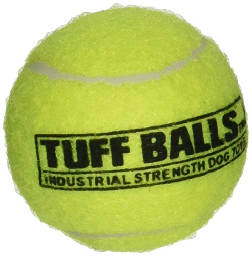 Tuff Ball Bulk Dog Toy [Set of 12]  Small (Mini Tennis Balls compare prices)