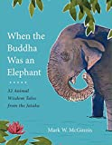 When the Buddha Was an Elephant: 32 Animal Wisdom Tales from the Jataka