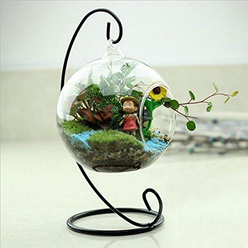 Miryo-Florero cristal colgante forma redondo con un agujero flor hidropónico Jarrón botella contenedor decoración de casa jardín regalo navidad