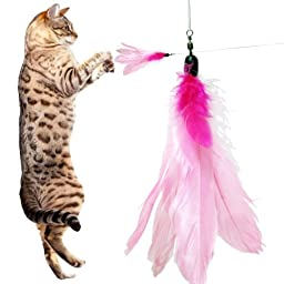 5 Pack Goose Feather Super Refill (PF) For Bird Catcher, Go Cat or Da Bird (Kittens or Older Cats) Unique Feline Chaser Charmer Dangler Dancer Replacement - Best Cat Toys Interactive Training Exercise