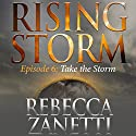Take the Storm Audiobook by Rebecca Zanetti Narrated by Natalie Ross