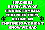 Lurchers Have A Way Of Finding Families That Need Them Dog Fridge Magnet Gift/Present