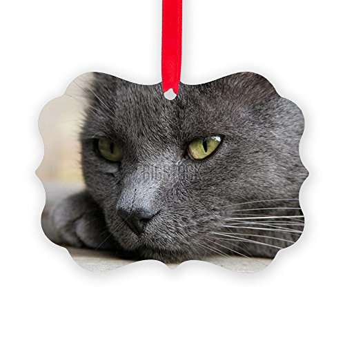 CafePress - Gray Cat Deep In Thought - Portra - Christmas Ornament, Decorative Tree Ornament (Russian Blue Cat Ornament compare prices)