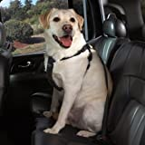 Cruising Companion Nylon Dog Car Harness, Small-Medium, Black