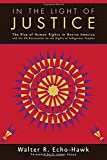 img - for In the Light of Justice: The Rise of Human Rights in Native America and the UN Declaration on the Rights of Indigenous Peoples book / textbook / text book