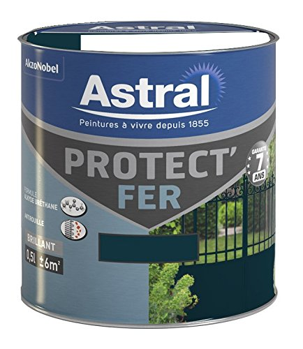 ASTRAL-5120654-Protectfer-05-L-Brillant-Vert-Basque