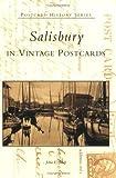 Salisbury in Vintage Postcards (Phs)
