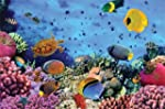 Cheetah Leisure 1000 Piece Coral Reef...