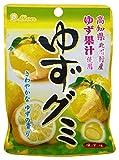 ライオン菓子 ゆずグミ 40g×10袋