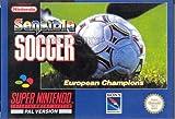 echange, troc Sensible Soccer European Champions