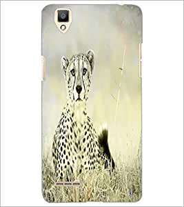 PrintDhaba Leopard D-4349 Back Case Cover for OPPO F1 (Multi-Coloured)