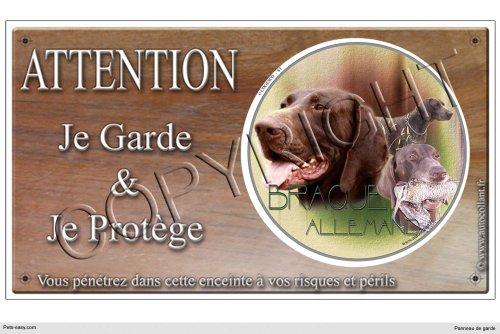 Pets-Easy.com - Cartello deterrente intrusi (lingua francese), con immagine di cane di razza Bracco tedesco 30 x 15 cm