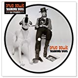 Diamond Dogs-40th Anniversary [Analog]
