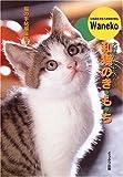 和猫のき・も・ち―大好きだから知りたい