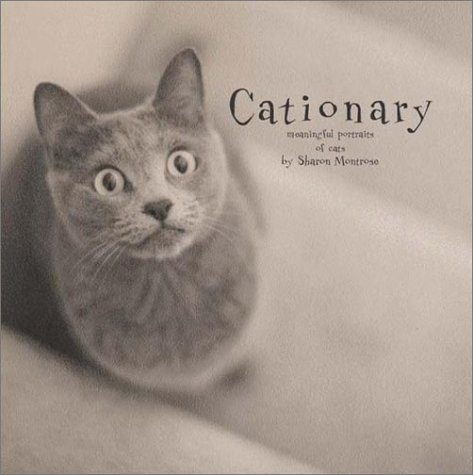 Image for Cationary : Meaningful Portraits of Cats