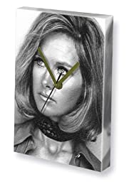 WANDA VENTHAM - Canvas Clock (LARGE A3 - Signed by the Artist) #js001