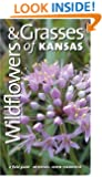 Wildflowers and Grasses of Kansas: A Field Guide