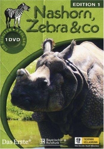 Nashorn Zebra Und Co