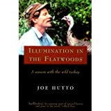 Illumination in the Flatwoods ~ Joe Hutto