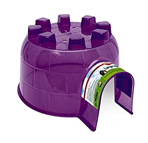 Kaytee Guinea Pig Igloo Hide-Out, Large, Colors may vary