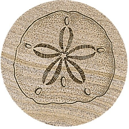 Thirstystone Sand Dollar Coasters