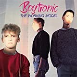 The Working Model (Deluxe Edition)