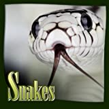 Kids Book : SNAKES (Great Picture Book for Kids to Learn) (Ages 4 - 9)