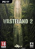 Wasteland 2 (PC DVD)