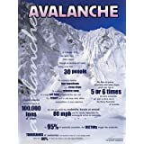 Avalanche educational poster chart