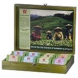 Wissotzky Tea Green Tea Chest, Assorted Tea Collection w/ 80 Assorted Green Teas
