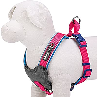 Blueberry Pet Summer Hope 3M Reflective No Pull Neoprene Padded Dog Harness, Matching Collar Available Separately