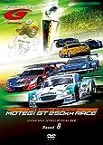 SUPER GT 2010 ROUND8 ツインリンクもてぎ [DVD]
