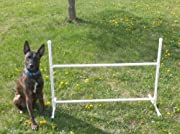 Single Adjustable Jump Dog Agility Equipment