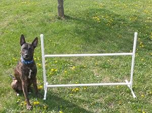 Single Adjustable Jump Dog Agility Equipment
