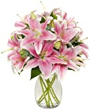 8 Stem Starfighter Stargazer Lily Bunch - With Vase