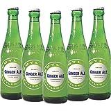 Boylan Bottleworks 12 oz. Ginger Ale 12pack