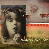 Songtexte von Dwight Ashley - Watermelon Sugar