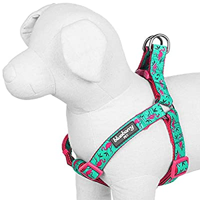 Blueberry Pet Step-in Harnesses Pink Flamingo on Light Emerald No Pull Dog Harness Adjustable