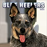 Blue Heelers 2004 Calendar