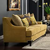 Furniture of America Atene Premium Fabric Loveseat - Gold