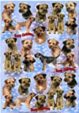 Border Terrier Dog Christmas Wrapping Paper Design by Starprint