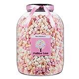 Mallow Tree Mini Marshmallows Sweet Shop Jar 1.1 Kg