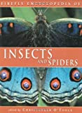 img - for Firefly Encyclopedia of Insects and Spiders book / textbook / text book