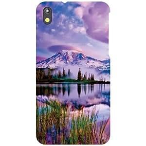 HTC Desire 816 Back Cover - Perfect Designer Cases