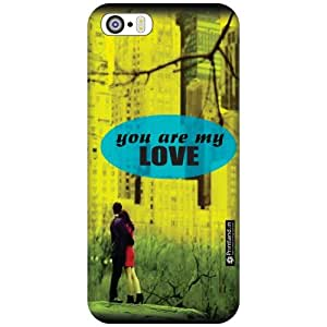 Apple iPhone 5S Printed Mobile Back Cover