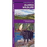 Alaska Wildlife: A Folding Pocket Guide to Familiar Species (Pocket Naturalist Guide Series)