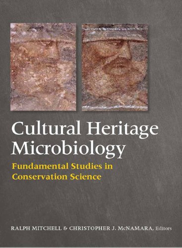Cultural Heritage Microbiology: Fundamental Studies In Conservation Science