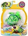 Little Live Pets Lil Turtle  Digi